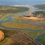 Au coeur de l'Amazonie … (La Guittière – Vendée)