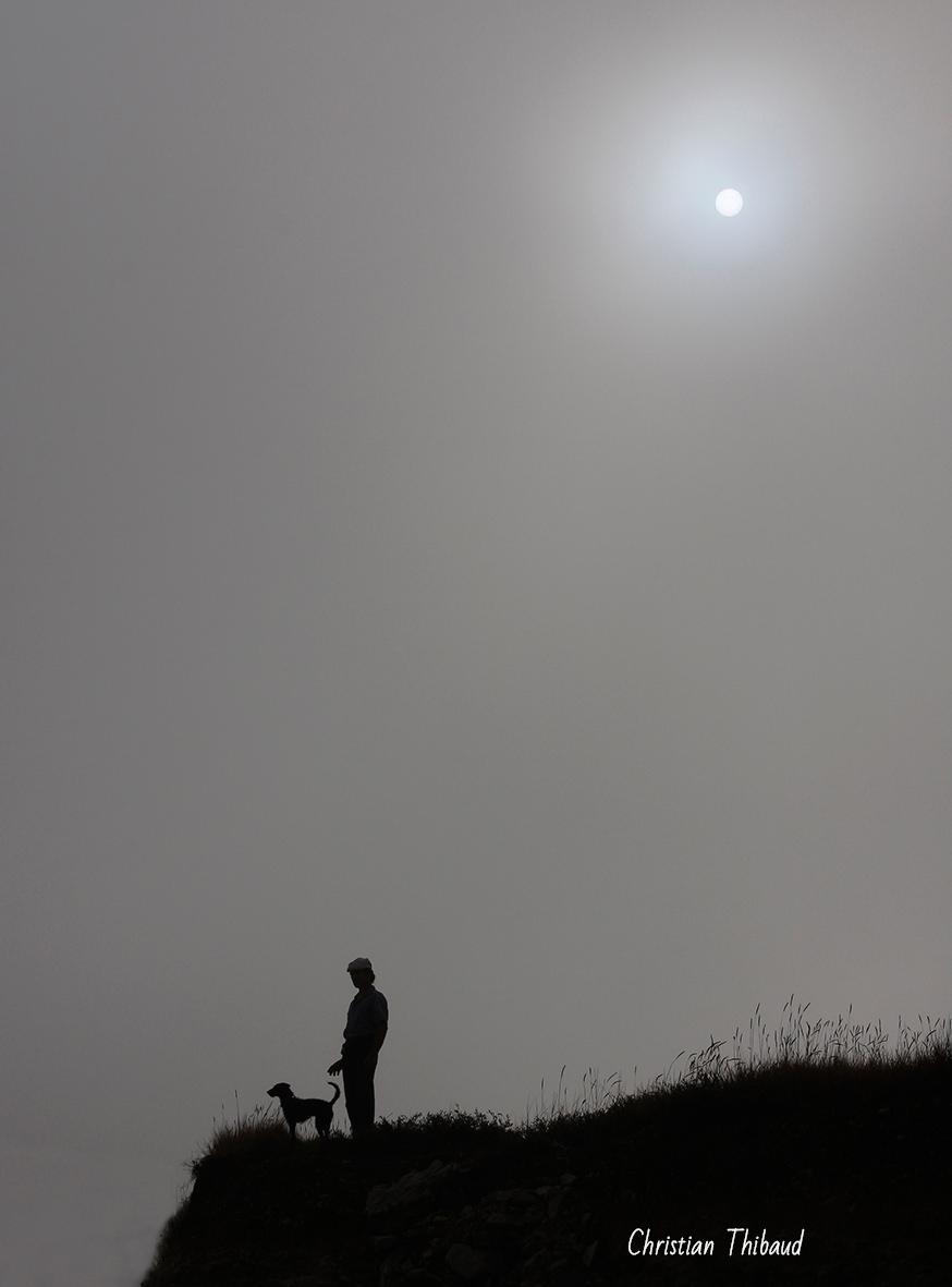Balade au clair de brume ...