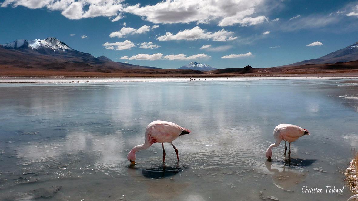 Ouvrir d'autres horizons ... (Bolivie)