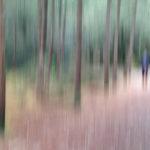 Dans les bois, se Pro ... Monet ...