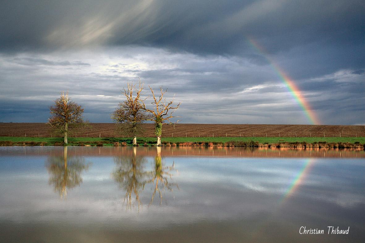 De terre et de ciel ... (St Vincent-Puymaufrais)