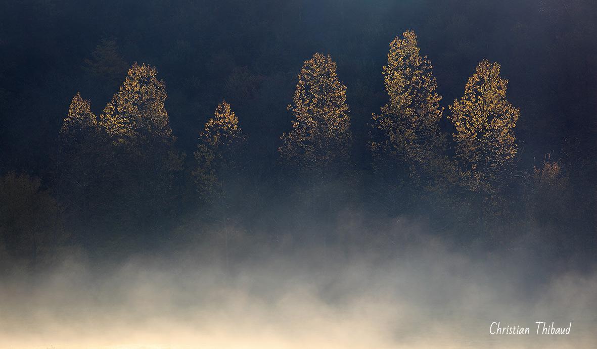Pointes de brume ...
