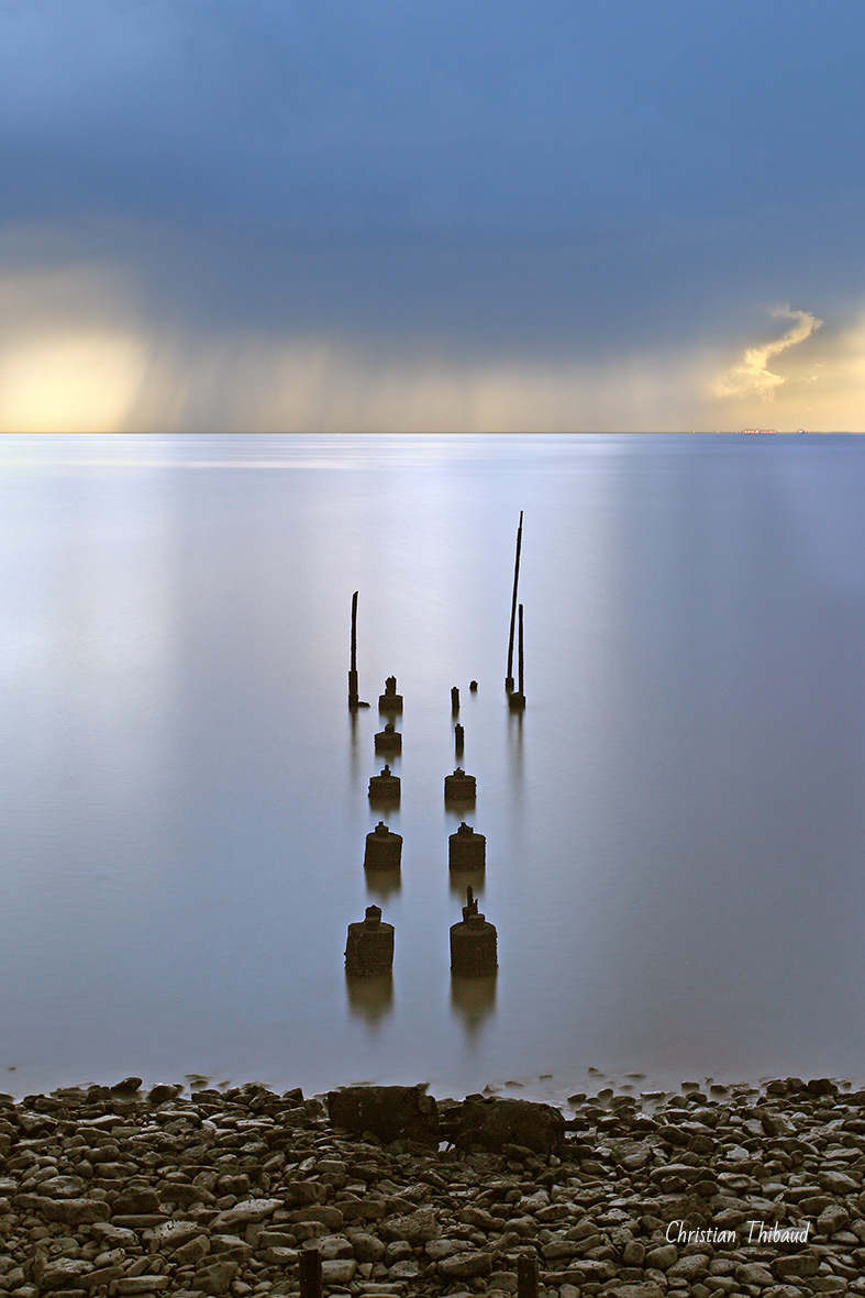 Sentinelles du monde bleu ...  Marsilly